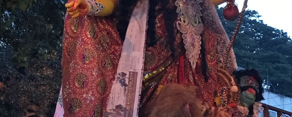 Immersion of Durga Puja - Organiser BARSHA